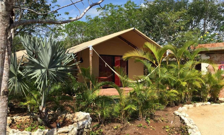 Safaritenten TentsXL